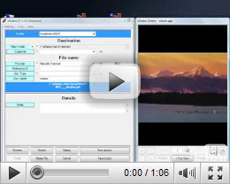 Processing Files and Folders in eXadox DT Video